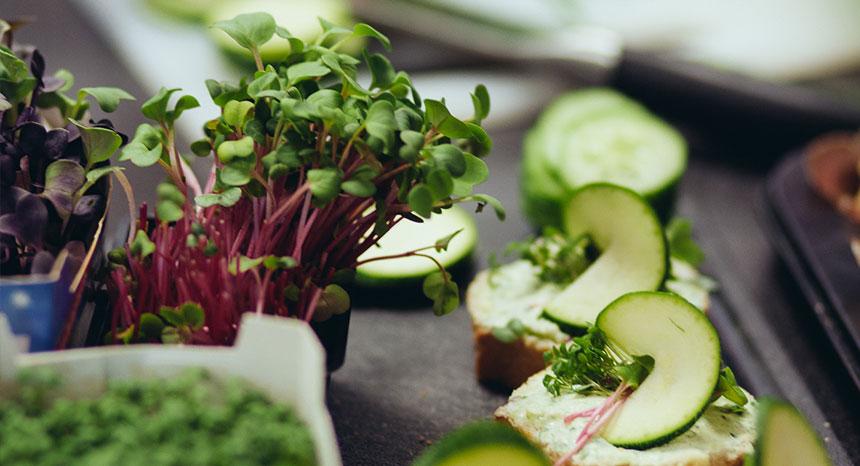 Vegetarisches Catering - Canapes | © mahl&zeit